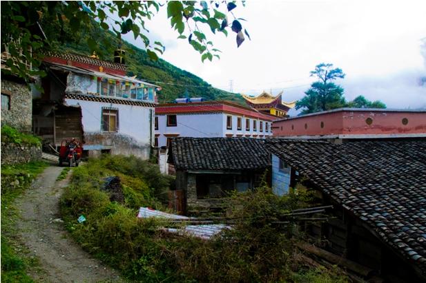 12 9 Наш путь к тибетцам (часть 1): Ченду   Кандинг