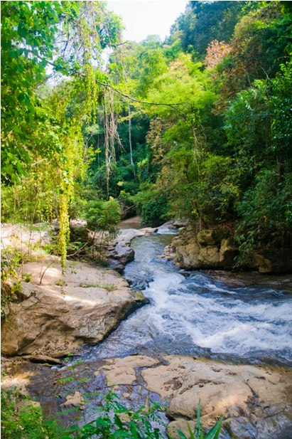 4 24 Чианг Май: начинаем изучать Таиланд