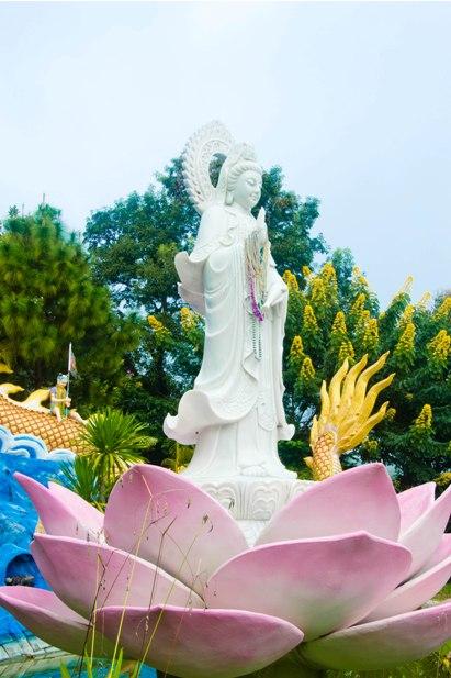 DSC 0294 Север Таиланда: Тха Тон, Мае Салонг