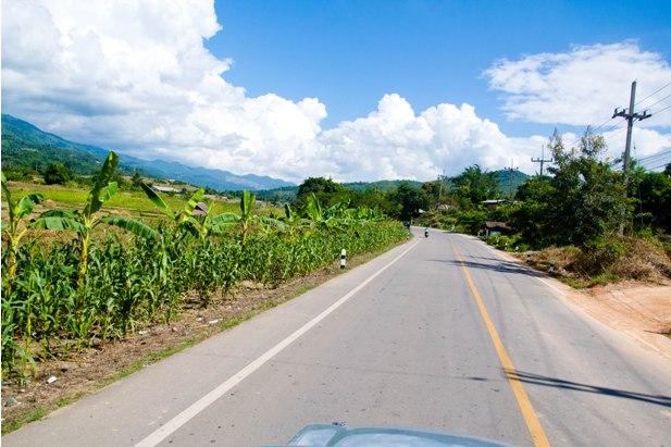 DSC 0363 Север Таиланда: Тха Тон, Мае Салонг