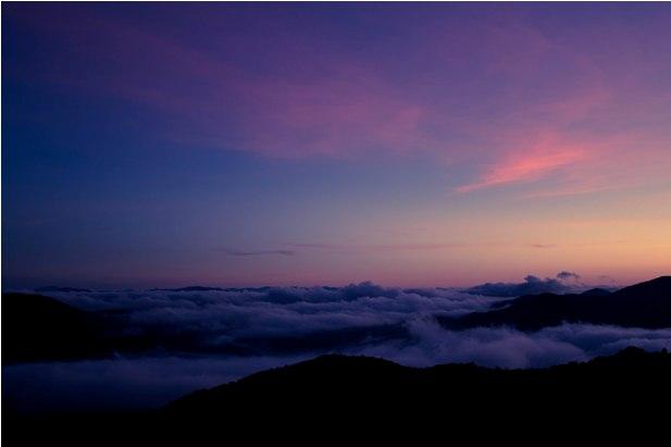 DSC 0681 Джунгли, горы и чайные плантации на Камерон Хайлендс