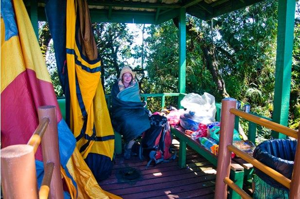 DSC 0694 Джунгли, горы и чайные плантации на Камерон Хайлендс