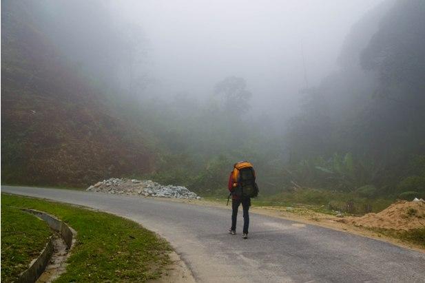 DSC 0774 Джунгли, горы и чайные плантации на Камерон Хайлендс