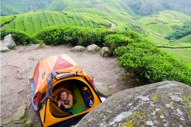 DSC 0779 Джунгли, горы и чайные плантации на Камерон Хайлендс