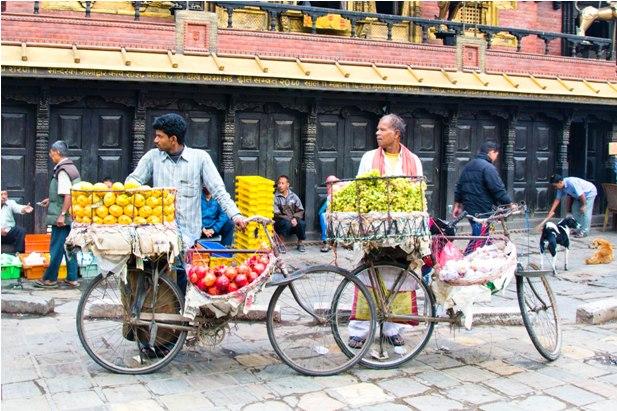 DSC 0155 Непал вне трека: общие впечатления