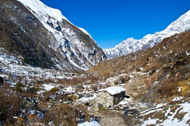 12 30 Трек в Лангтанг (часть 5): Kyangien Gompa – Lama Hotel   Shyaphrupesi   Kathmandu