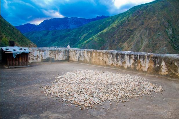 1DSC 0001 173 Наш путь к тибетцам (часть 3): Даоченг   Шангри Ла