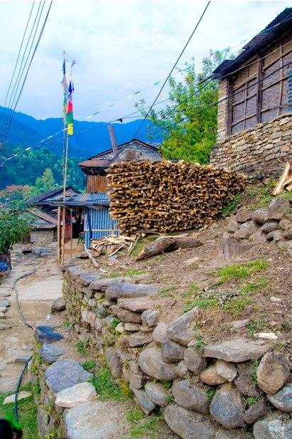 DSC 0023 Месяц на треке в районе Аннапурны (часть 1): Kathmandu   Nadi Bazar   Gagat   Bagarchhap   Timang