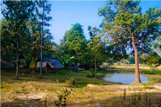 DSC 00332 Немного о Лаосе   автостоп, люди, цены