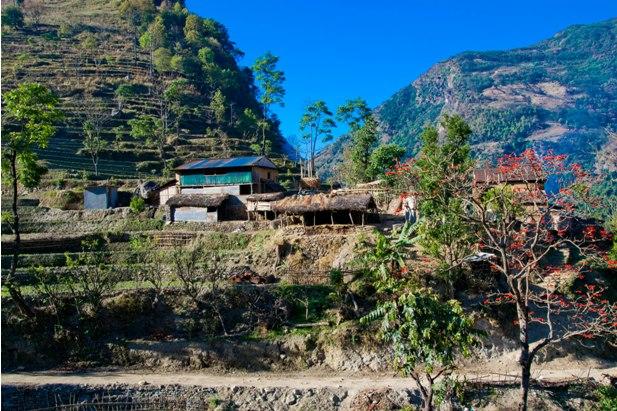 DSC 00571 Месяц на треке в районе Аннапурны (часть 1): Kathmandu   Nadi Bazar   Gagat   Bagarchhap   Timang