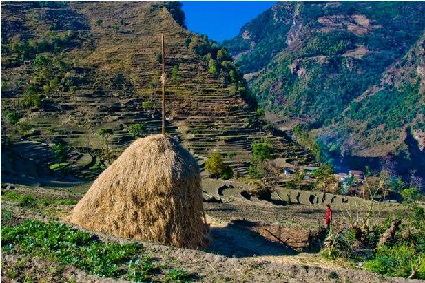 DSC 0060 Месяц на треке в районе Аннапурны (часть 1): Kathmandu   Nadi Bazar   Gagat   Bagarchhap   Timang