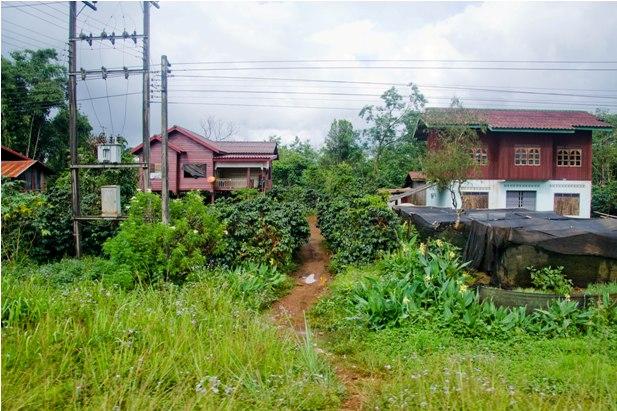 DSC 00771 Немного о Лаосе   автостоп, люди, цены