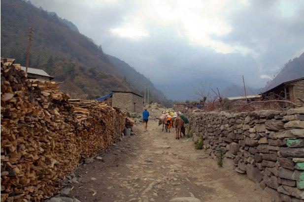 DSC 0118 Месяц на треке в районе Аннапурны (часть 1): Kathmandu   Nadi Bazar   Gagat   Bagarchhap   Timang