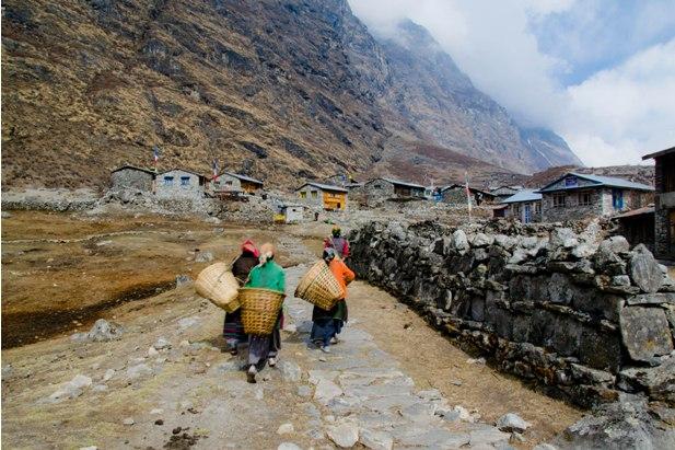 DSC 01211 Трек в Лангтанг (часть 2): Lama Hotel – Langtang