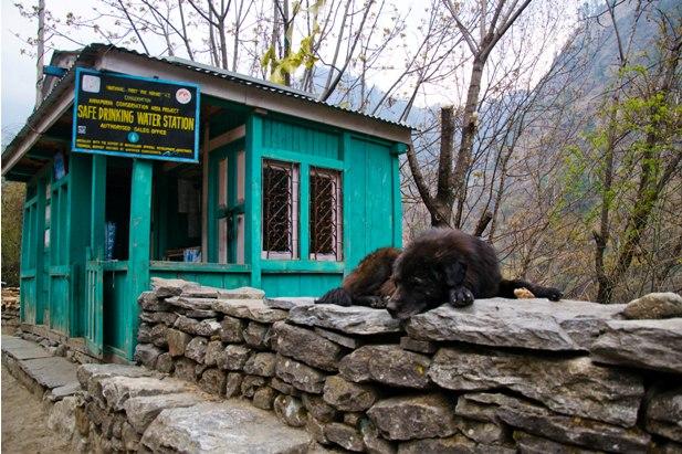 DSC 01941 Непал. Жизнь на треке (инструкция)