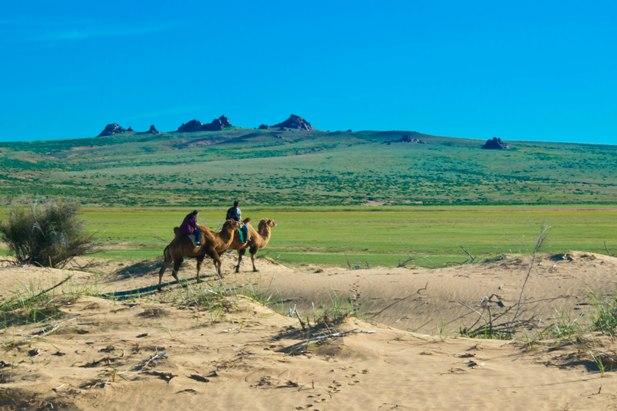 DSC 0775 Монгол Элс: пески и верблюды