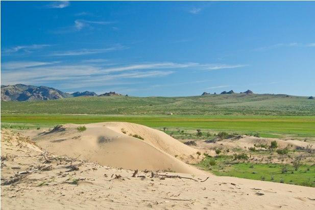 DSC 0789 Монгол Элс: пески и верблюды
