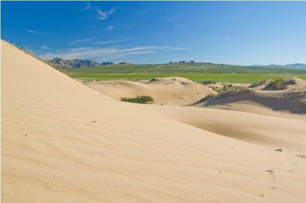DSC 0791 Монгол Элс: пески и верблюды