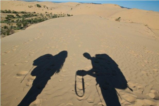 DSC 0797 Монгол Элс: пески и верблюды