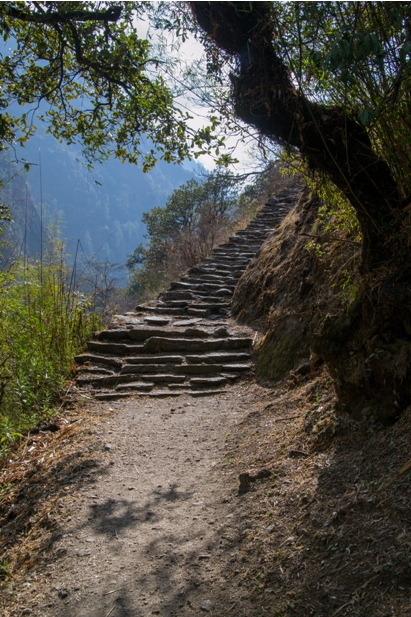Lang 467 Трек в Лангтанг (часть 5): Kyangien Gompa – Lama Hotel   Shyaphrupesi   Kathmandu