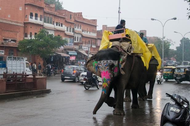 DSC 0151 Розовый город Джайпур