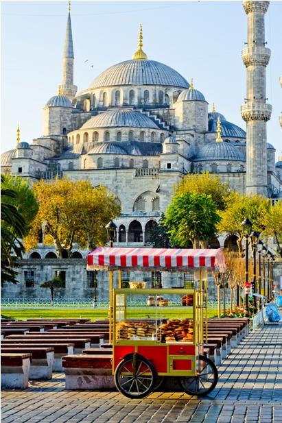 DSC 0190 1 278 Стамбул в картинках