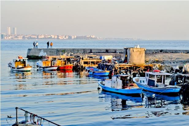 DSC 0190 1 349 Стамбул в картинках