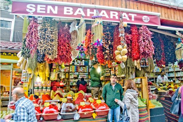 DSC 0190 1 427 Стамбул в картинках