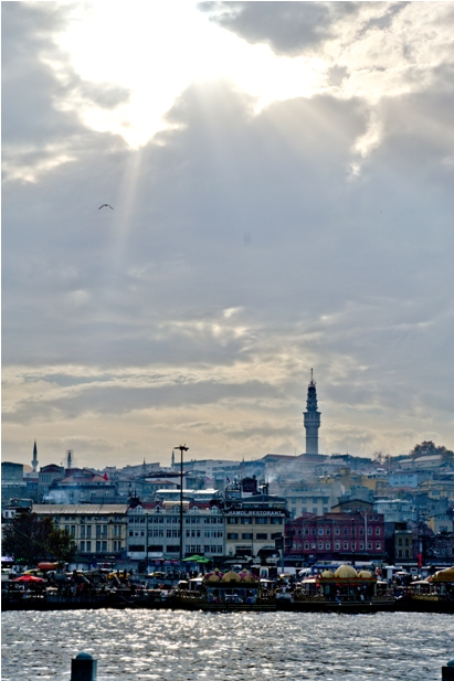 DSC 0190 1 549 Стамбул в картинках