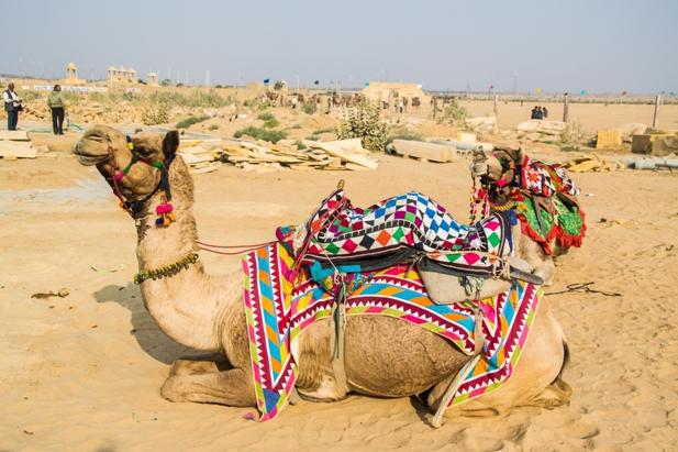 DSC 0122 Как прошел The Desert Festival в Джайсалмере