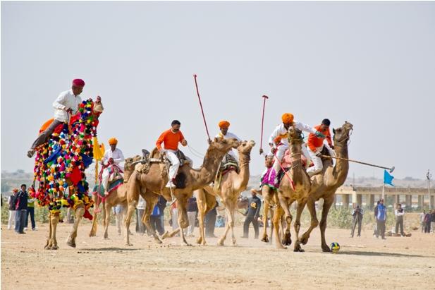 DSC 01811 Как прошел The Desert Festival в Джайсалмере