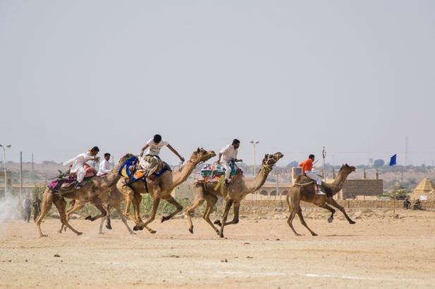 vh 292 Как прошел The Desert Festival в Джайсалмере