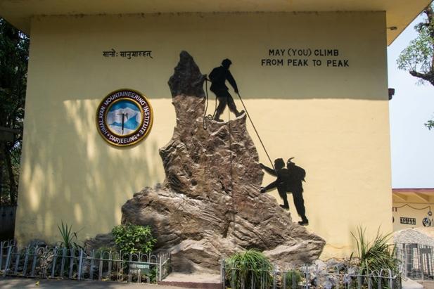 DSC 06691 Дарджилинг: чай, паровоз и музей Эвереста