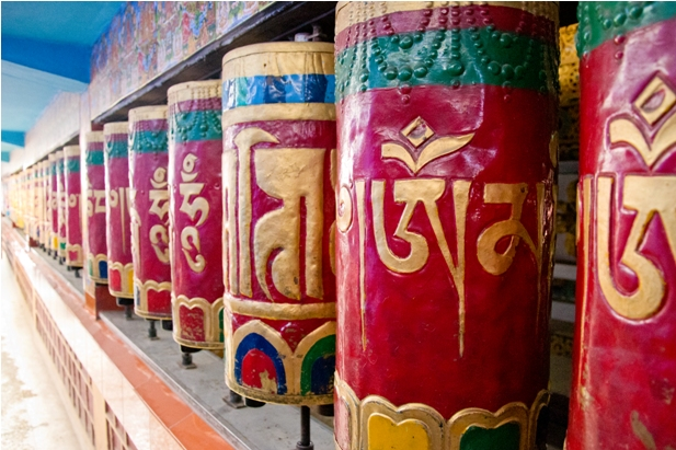 DSC 0711 Дарамсала и Маклеод Ганж: кусочек Тибета в Индии
