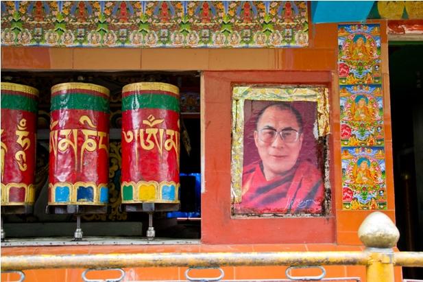 DSC 0712 Дарамсала и Маклеод Ганж: кусочек Тибета в Индии