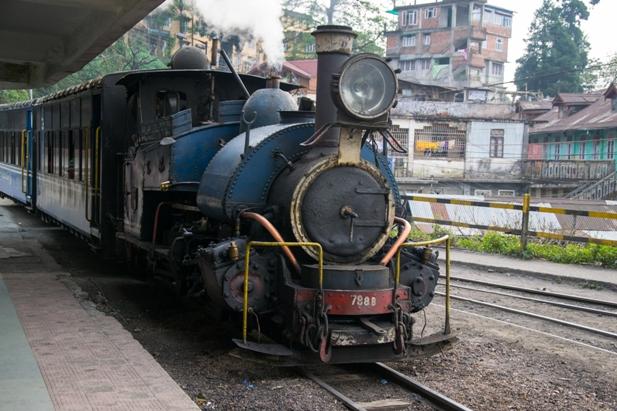 DSC 0728 Дарджилинг: чай, паровоз и музей Эвереста