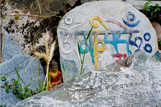 DSC 0749 Дарамсала и Маклеод Ганж: кусочек Тибета в Индии