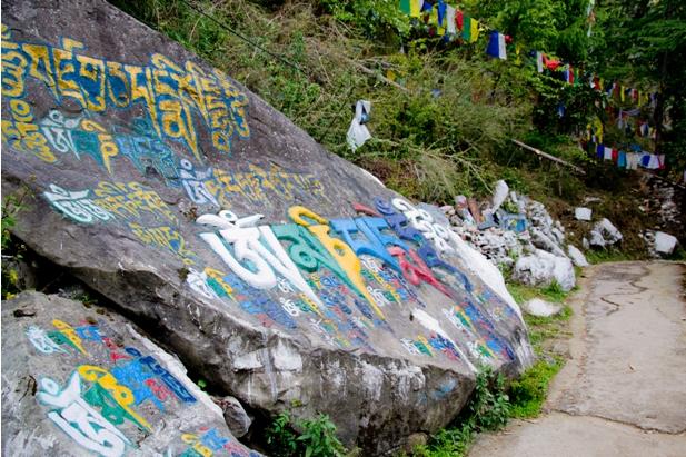 DSC 0753 Дарамсала и Маклеод Ганж: кусочек Тибета в Индии