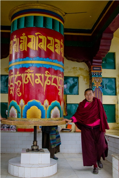DSC 0761 Дарамсала и Маклеод Ганж: кусочек Тибета в Индии