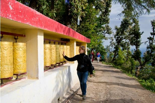 DSC 0768 Дарамсала и Маклеод Ганж: кусочек Тибета в Индии