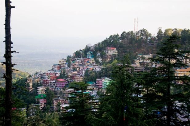 DSC 0782 Дарамсала и Маклеод Ганж: кусочек Тибета в Индии