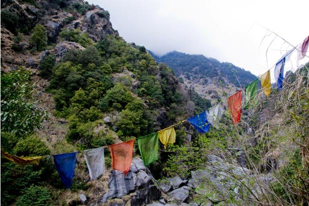 DSC 0799 Дарамсала и Маклеод Ганж: кусочек Тибета в Индии