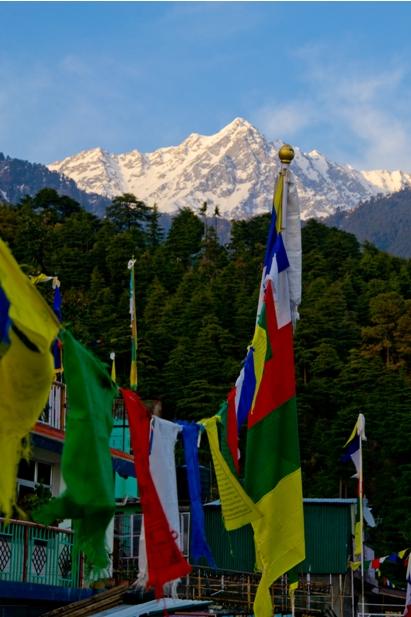 DSC 0820 Дарамсала и Маклеод Ганж: кусочек Тибета в Индии