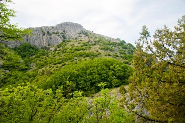 DSC 2289 Большой каньон Крыма
