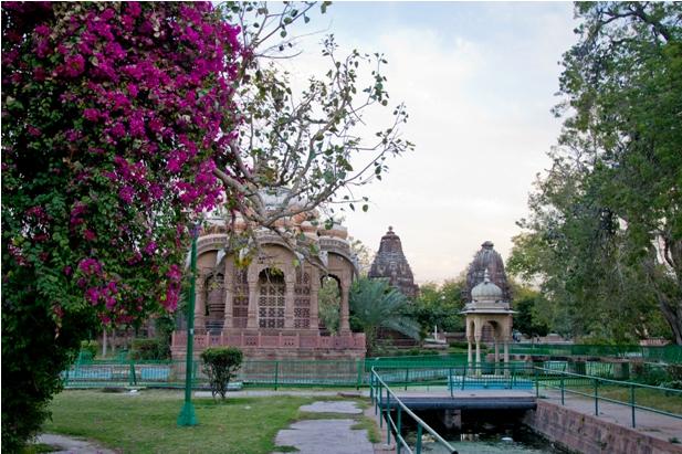 DSC 0947 Прогулки по Джодхпуру и окрестностям
