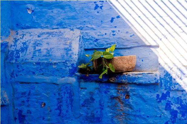 DSC 0983 Синие стены старого города