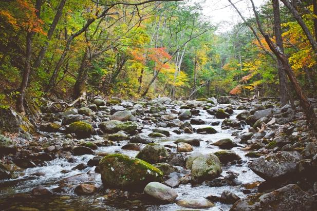 DSC 0017 Осеннее Приморье   водопады, Фалаза и кусочек моря