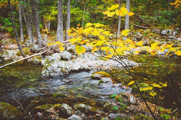 DSC 0025 Осеннее Приморье   водопады, Фалаза и кусочек моря