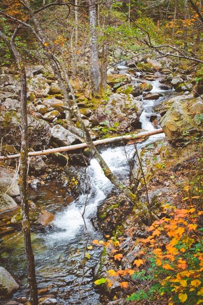 DSC 0044 Осеннее Приморье   водопады, Фалаза и кусочек моря