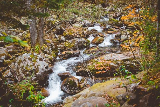 DSC 0045 Осеннее Приморье   водопады, Фалаза и кусочек моря